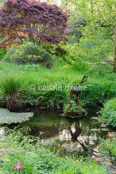Figure of the water carrier in the Addicombe Brook, flowing down from Dartmoor and through the garden, with dark purple form of Acer palmatum behind. Lukesland, Harford, Ivybridge, Devon, UK