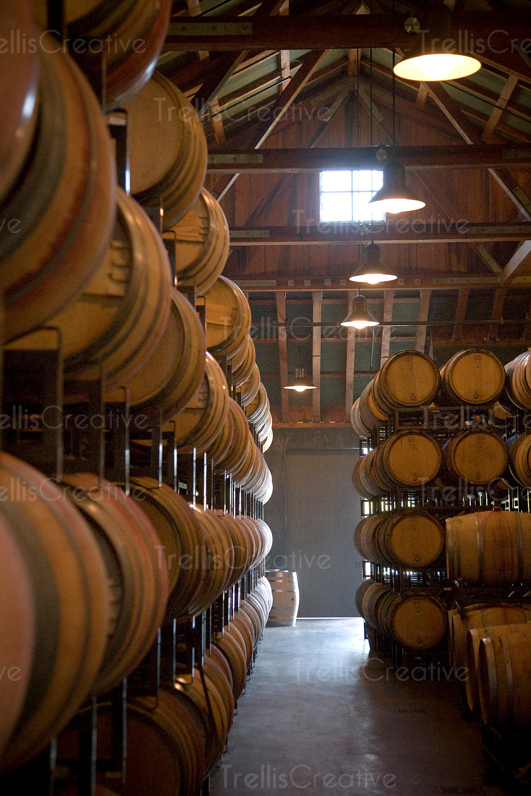 Sunlight spills into a winery barrel cellar