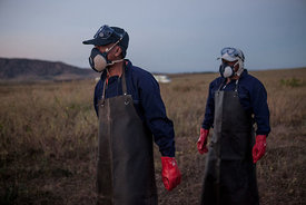 Members of the technical team of the Food and Agriculture Organization of the United Nations (FAO), wearing masks and gloves, are pictured as they prepare insecticide for a helicopter equipped for pesticide spreading on May 7, 2014 in Tsiroanomandidy, Madagascar. FAO mission is to fight the locust's swarm with an insecticide.