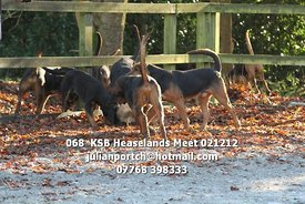 068__KSB_Heaselands_Meet_021212