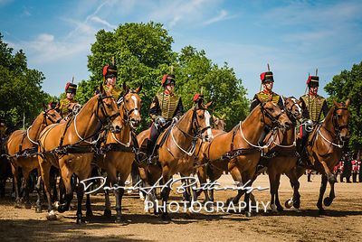 Trooping_the_Colour_8896