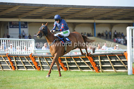 Novices' Handicap Hurdle Race with winner Sarenice