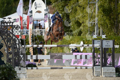 Janika SPRUNGER ,(SUI), ARIS CMS during Longines Cup of the City of Barcelona competition at CSIO5* Barcelona at Real Club de Polo, Barcelona - Spain