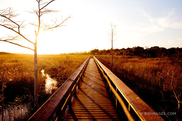 PA-HAY-OKEE BOARDWALK TRAIL EVERGLADES NATIONAL PARK FLORIDA
