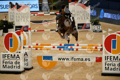 julia hargreaves aus carly during csi trofeo madrid horse week competition at