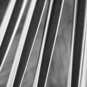 B&W Abstract Palm Photography