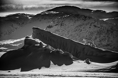 Life on ice 1, Baffin Island Canada 2016 © Laurent Baheux