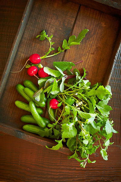 Radishes, cucumbers and field greens