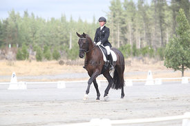 SI_Festival_of_Dressage_310115_Level_1_Champ_0676