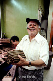Man holding a batch of cigars, Puerto Rico