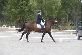 SI_Festival_of_Dressage_310115_Level_8_MFS_1106