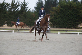 SI_Festival_of_Dressage_300115_Level_4_JLT_0113