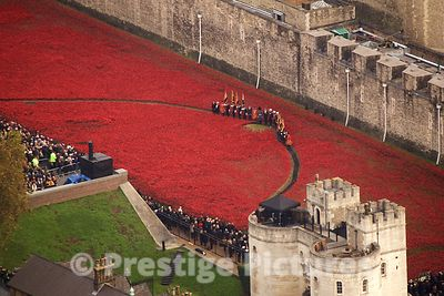 Dignitaries Lead the Act of Remembrance Standing Amongst the Tower of London Poppies at the eleventh hour of the eleventh day of the eleventh month 2014