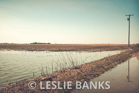 Flooded Farmland in Rural America