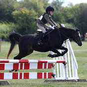 2nd August 2015 :: Charlton on Otmoor Show ::  Jumping- Morning photos
