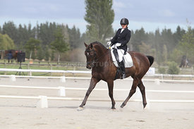 SI_Festival_of_Dressage_310115_Level_4_Champ_0604