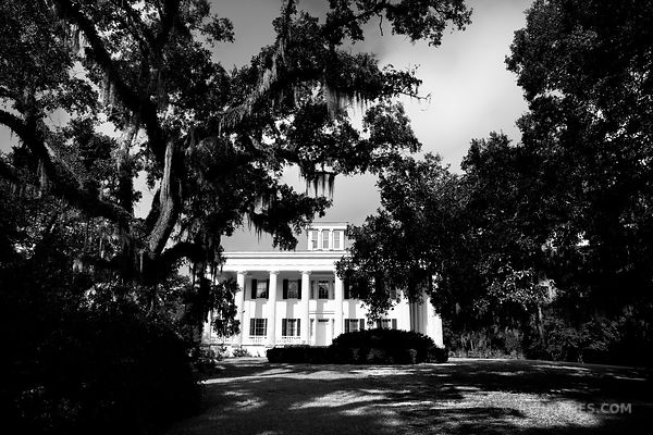 GREENWOOD PLANTATION ST. FRANCISVILLE LOUISIANA BLACK AND WHITE