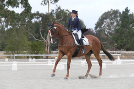SI_Festival_of_Dressage_310115_Level_8_MFS_1134