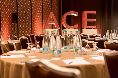 ACE&Company Global Investment Forum 2015