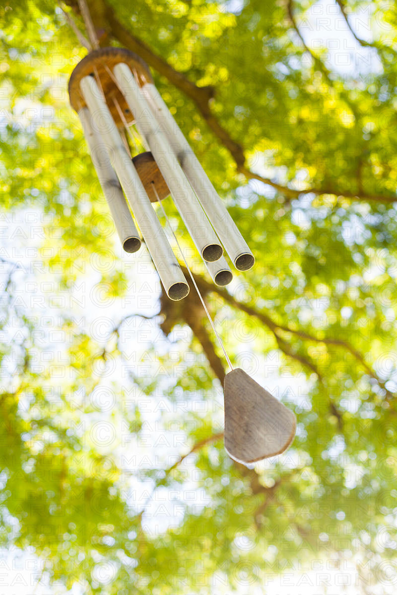 wind chime in tree