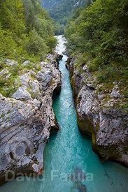 Golobar canyon (Soča river) Triglav National Park