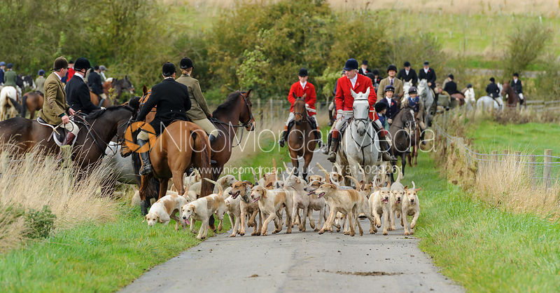 The Cottesmore Hunt at Somerby 2/11 photos