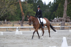 SI_Festival_of_Dressage_300115_Level_3_NCF_0101