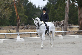 SI_Festival_of_Dressage_310115_Level_5_Champ_0828