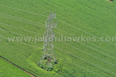 Aerial view of Electric Pylon, fields, Iron Acton