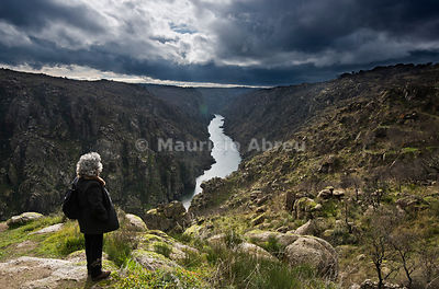 The river Douro crossing the wild and rocky gorges of the International Douro Nature Park, between Spain and Portugal. Trás-os-Montes, Portugal (MR)