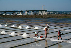 Salt Fields, Figeuria Da Foz, Portugal