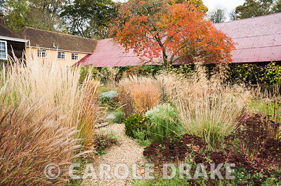 Gravel path leading into the central circular bed framed by miscanthus, rosemary, Stipa gigantea, salvias, Sedum 'Purple Emperor' and Calamagrostis brachytricha. Broughton Buildings, Broughton, nr Stockbridge, Hants, UK