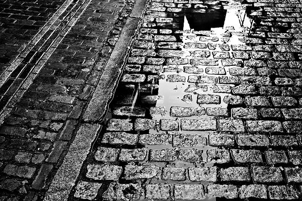 COBBLE STONE STREET IN THE RAIN BOSTON BLACK AND WHITE