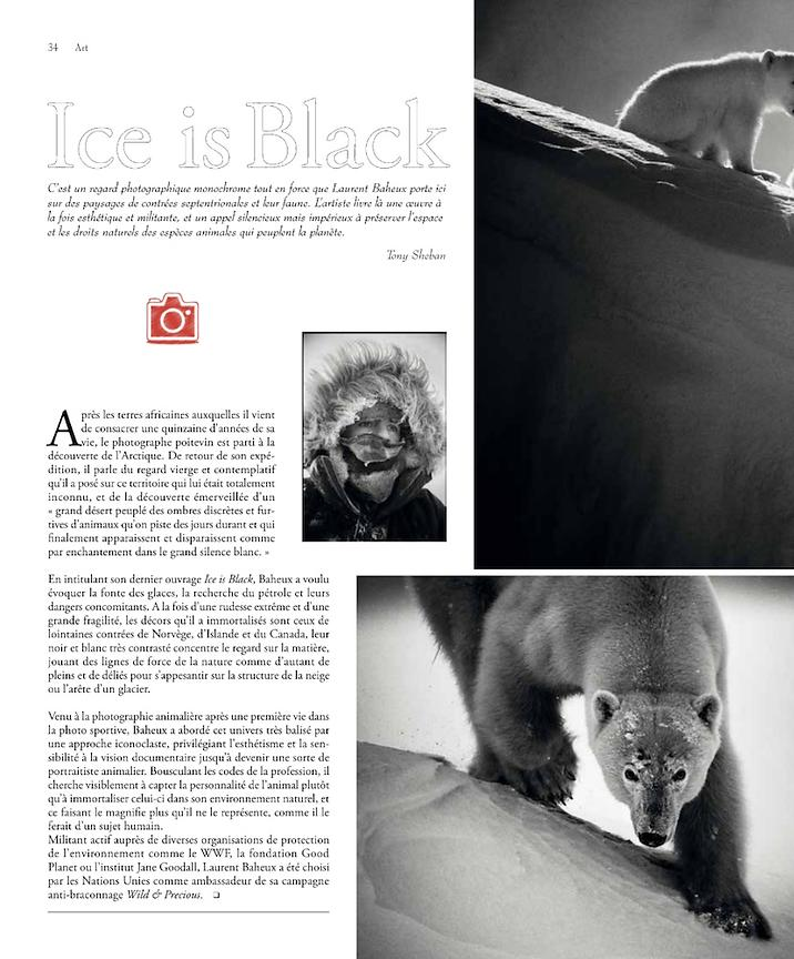 201801-Dandy_Magazine_(France)_IceisBlack