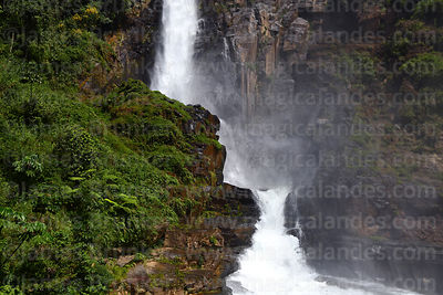 Yungas Region photographs