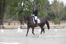 SI_Festival_of_Dressage_300115_Level_3_NCF_0107