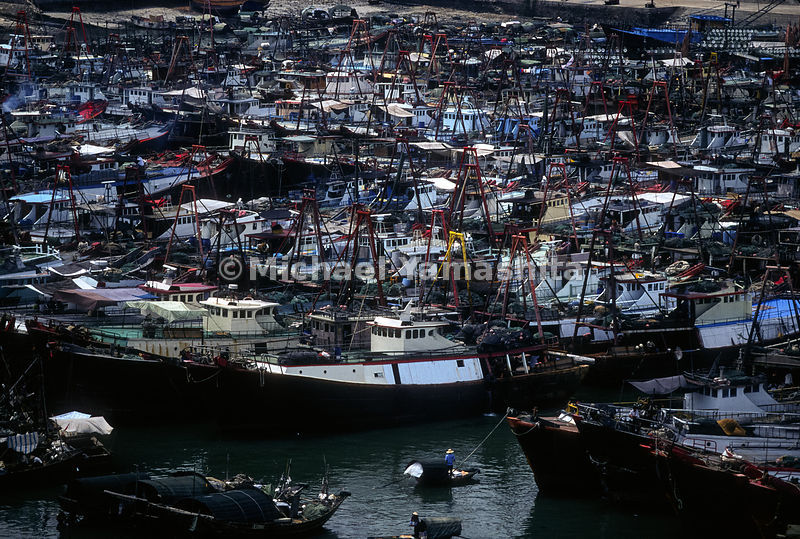 Biggest fishing port in Southern China. 60% of town relies on fishing industry. Qiaogang Fishing Boat Harbor..Beihai, China