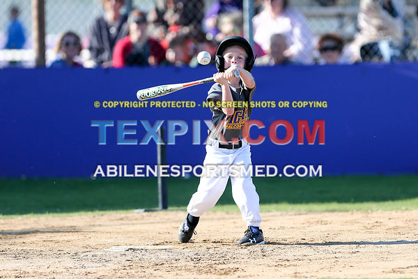 04-08-17_BB_LL_Wylie_Rookie_Wildcats_v_Tigers_TS-453