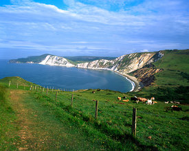 Worbarrow Bay near Lulworth, Dorset.