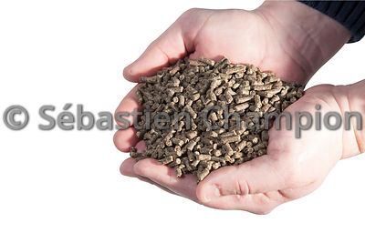 GRANULES D ALIMENTATION ANIMALE