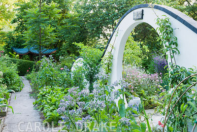 Moon gate marks passage from the kitchen garden to the Wandering Garden, framed by borage and trained fruit trees with Geranium palmatum beyond. Beggars Knoll, Newtown, Westbury, Wiltshire, BA13 3ED, UK