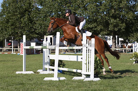 NZ_Nat_SJ_Champs_080215_1m10_pony_0088
