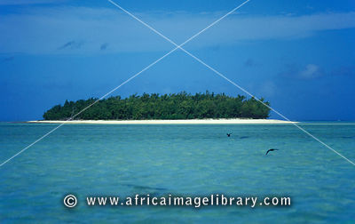 Ile aux Cocos, Island sanctuary for sea birds, Rodrigues