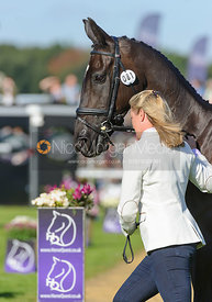 Nicola Wilson and OPPOSITION BUZZ - The final trot up, Burghley Horse Trials 2013.