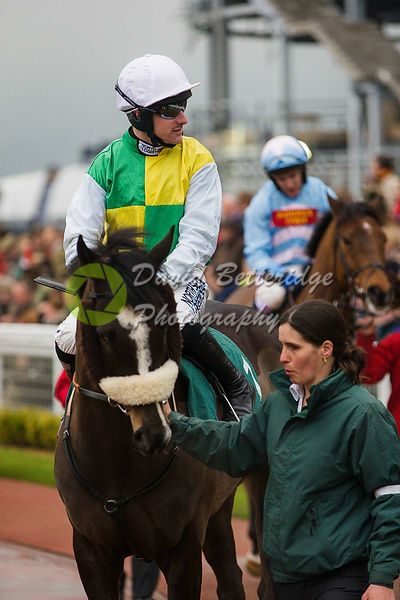 Cheltenham_Gold_Cup_Day_2015_-174