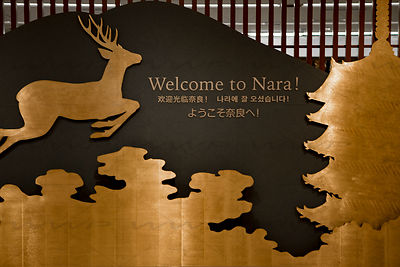 Nara Art Photographs