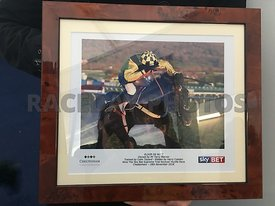 3:30 - The Sky Bet Supreme Trial Novices' Hurdle Race  photos