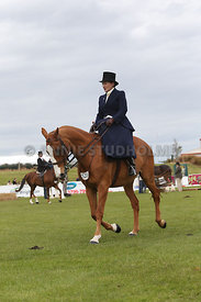 Canty_A_P_131114_Side_Saddle_1204