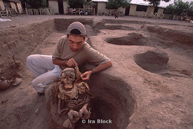 cleaning excavated skeleton