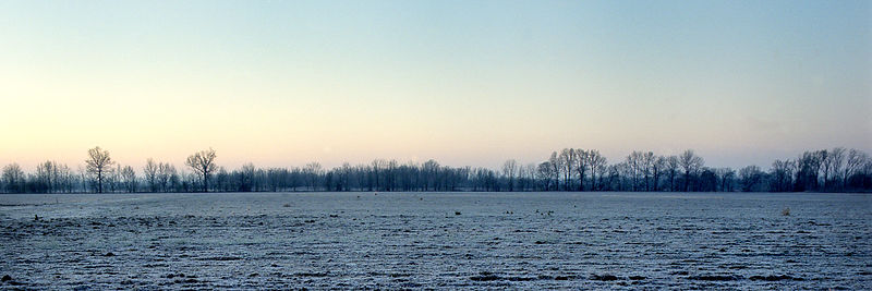 HWY61038_Delta_Sunrise_in_Winter_Preview